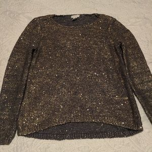Blue with gold sequins sweater.